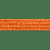(2560) apelsin