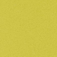ROMA Färg: limegrön (VP0906)
