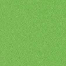 ROMA Färg: ljusgrön (VP0907)